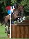 Mark Todd (equestrian)