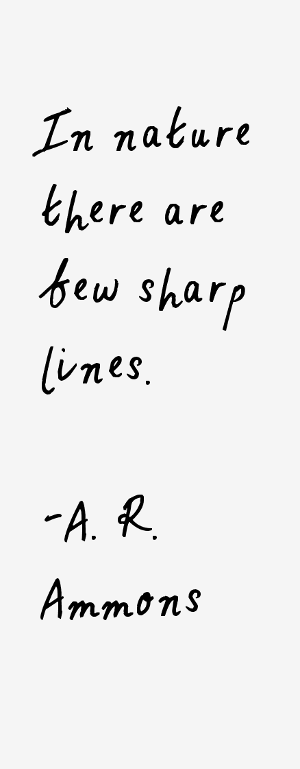 A. R. Ammons Quotes