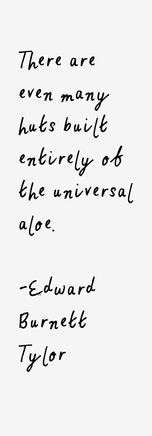 Edward Burnett Tylor Quotes